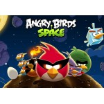 Free Download Angry Birds Space Full Version PC Game.